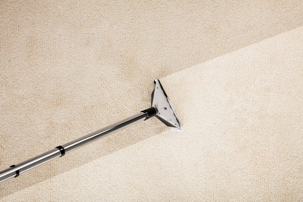 carpet cleaning in detroit