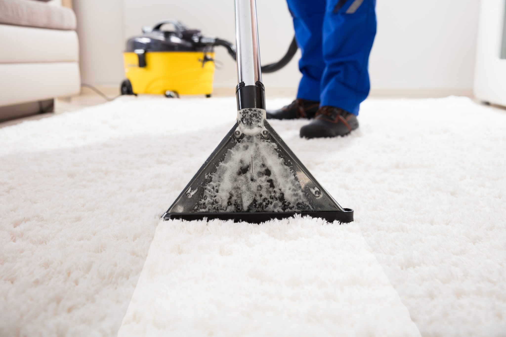 cleaning carpets in metro detroit